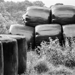 Silage Bales